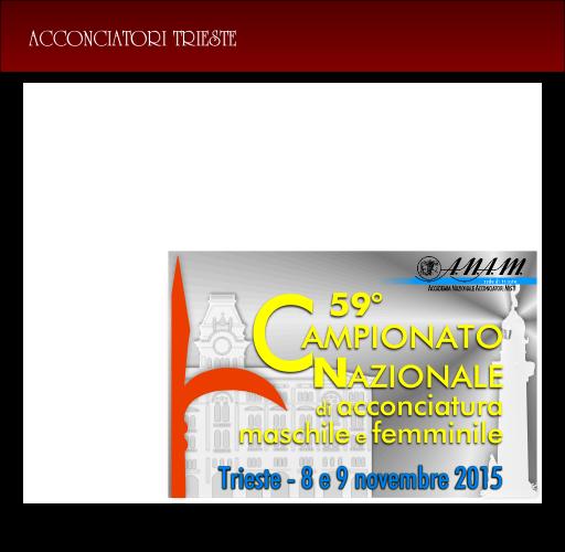 Trieste (7, 8, 9 novembre 2015): 59° Campionato Italiano di Acconciatura femminile e maschile...
