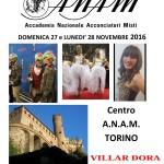 60° Campionato ITALIANO A.N.A.M. di ACCONCIATURA Maschile e Femminile (Torino – 27/28 novembre 2016)!